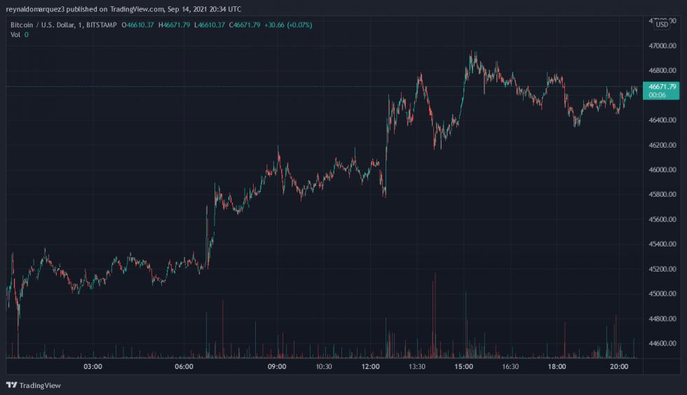 grafico dei profitti bitcoin